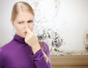 Bethel Park, PA   Woman Holding Nose   Moldy Basement   Everdry Pittsburgh